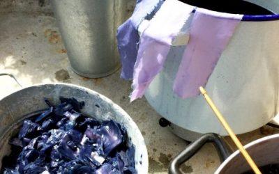 «Eco Dye und Färben mit Wintergemüse»