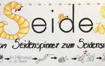 Ausstellung: Seide – Vom Seidenspinner zum Seidenstoff